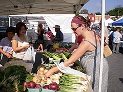 [photo, Waverly Farmers' Market, 32nd St. and Barclay St., Baltimore, Maryland]